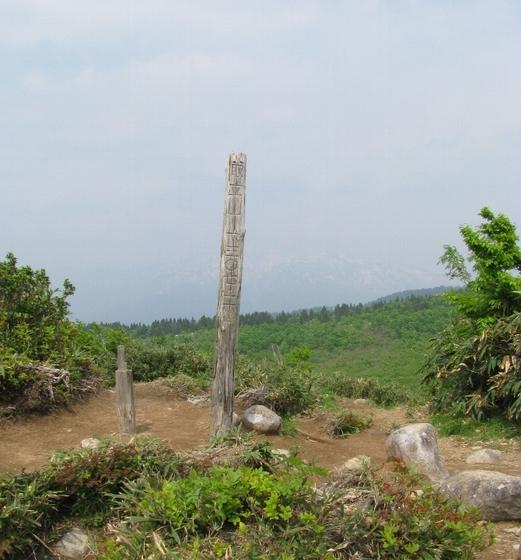 6月の取立て山IMG_8434-400.jpg
