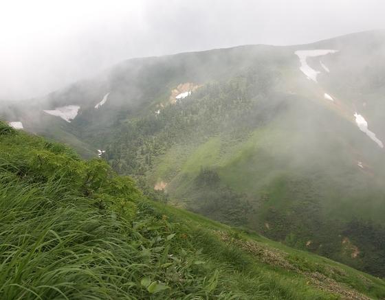 P7160656-7月巻機山.jpg